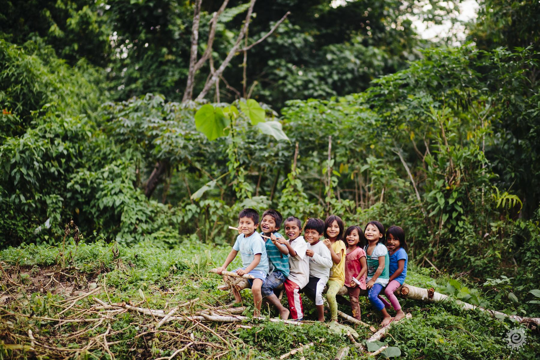 Conservación de Bosques y Desarrollo