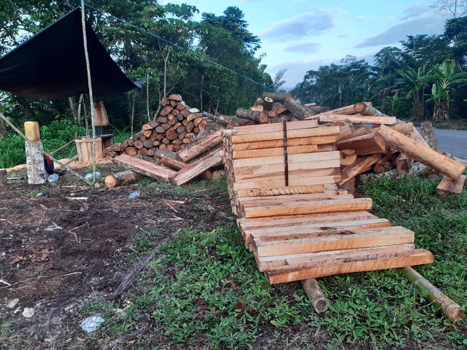Cumbre extraordinaria: La Nación Wampís establece medidas para frenar la tala ilegal y exige restablecer clases escolares presenciales